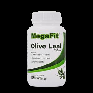 Oliven blatt vitamin