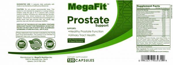 prostate labelled diagram